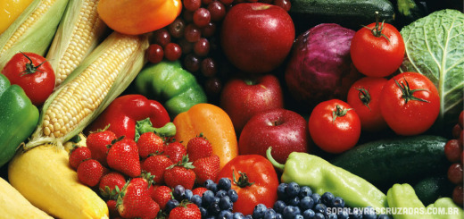 Palavras Cruzadas - Vegetarianismo