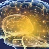 Palavras Cruzadas - Lavagem Cerebral