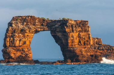 Palavras Cruzadas - Arco de Darwin